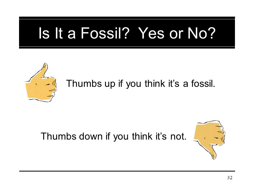 Is It a Fossil Yes or No Thumbs up if you think it's a fossil.