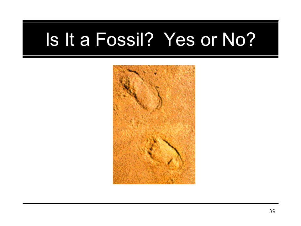 Is It a Fossil Yes or No Fossil human footprints; 200,000 years old.