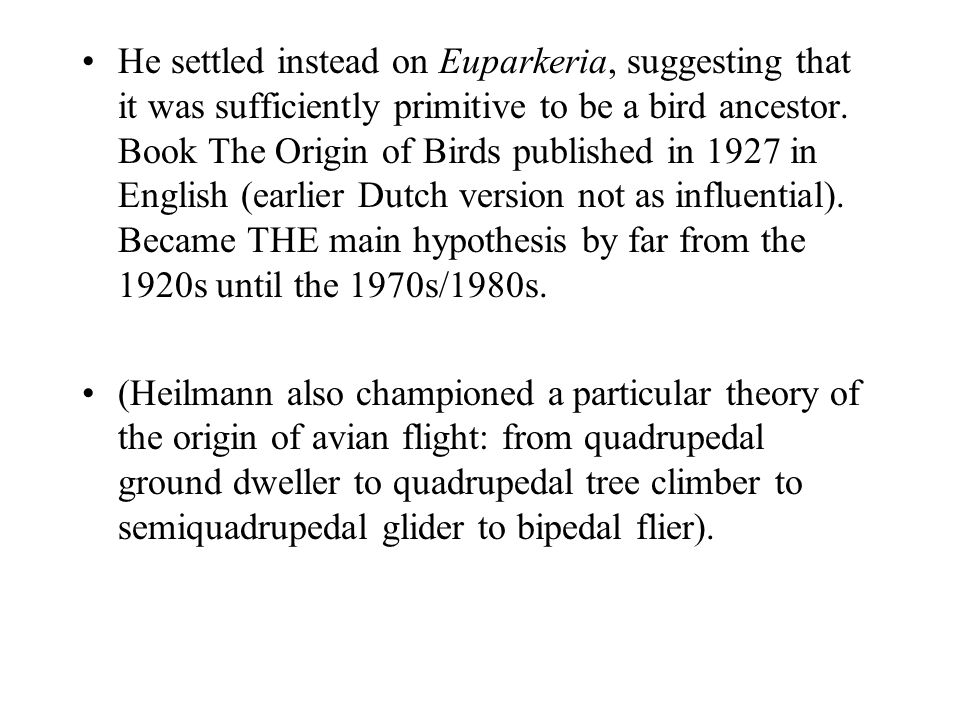 He settled instead on Euparkeria, suggesting that it was sufficiently primitive to be a bird ancestor. Book The Origin of Birds published in 1927 in English (earlier Dutch version not as influential). Became THE main hypothesis by far from the 1920s until the 1970s/1980s.