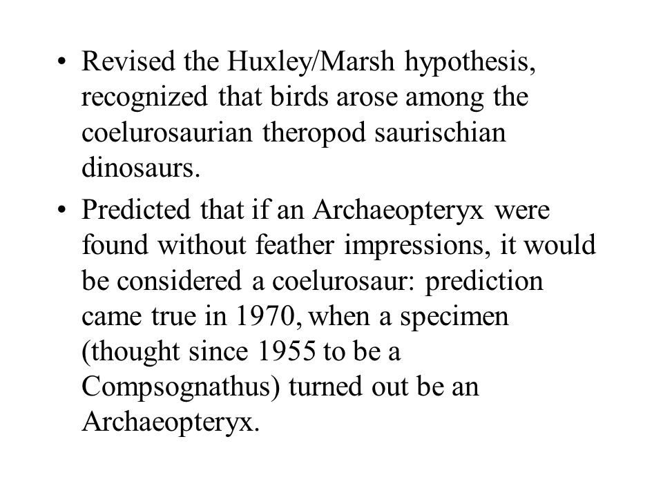 Revised the Huxley/Marsh hypothesis, recognized that birds arose among the coelurosaurian theropod saurischian dinosaurs.