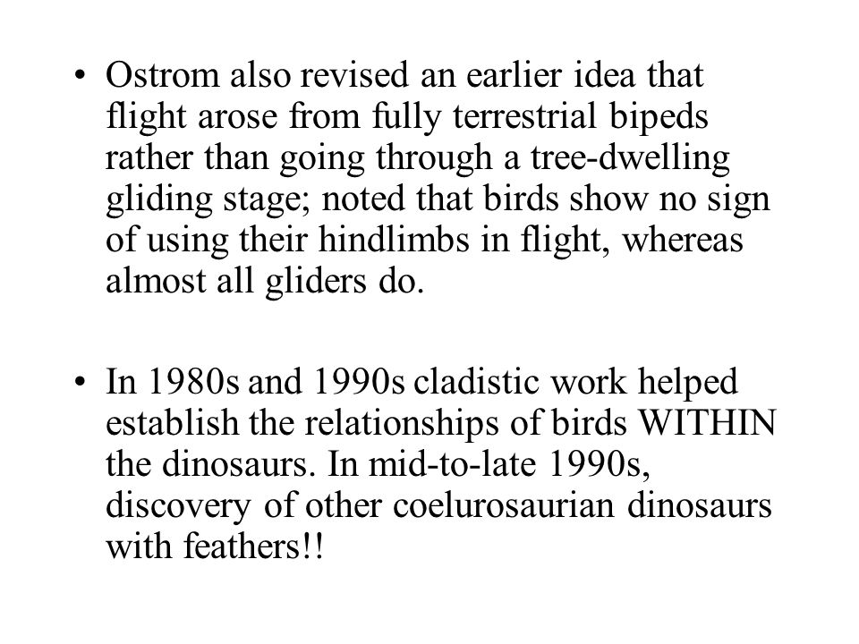 Ostrom also revised an earlier idea that flight arose from fully terrestrial bipeds rather than going through a tree-dwelling gliding stage; noted that birds show no sign of using their hindlimbs in flight, whereas almost all gliders do.