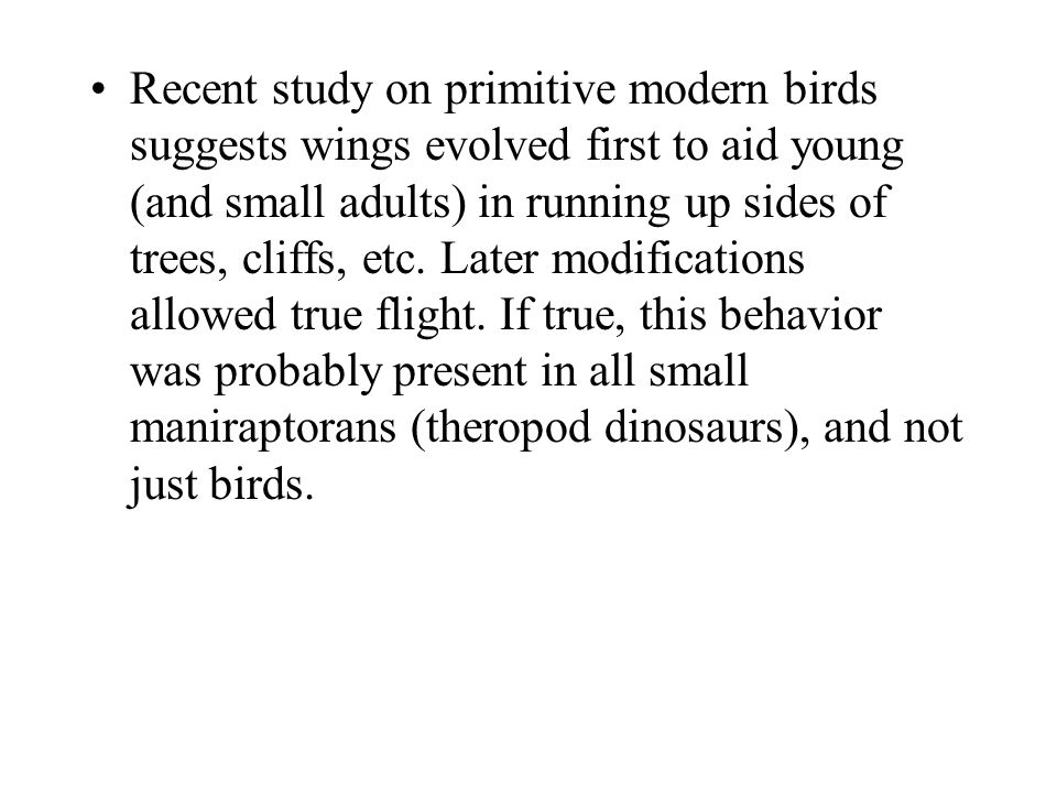 Recent study on primitive modern birds suggests wings evolved first to aid young (and small adults) in running up sides of trees, cliffs, etc.