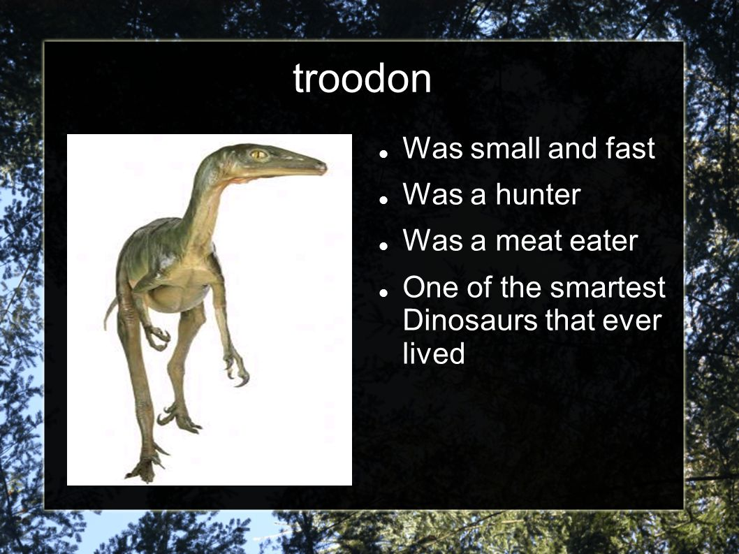troodon Was small and fast Was a hunter Was a meat eater