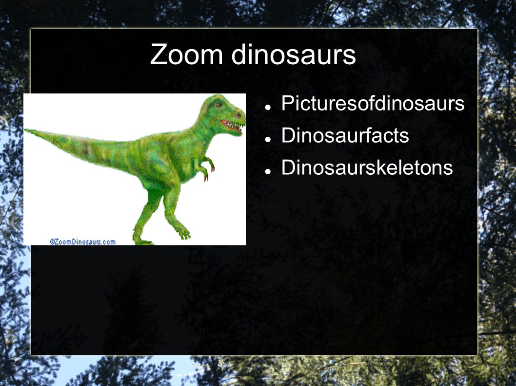 Zoom dinosaurs Picturesofdinosaurs Dinosaurfacts Dinosaurskeletons
