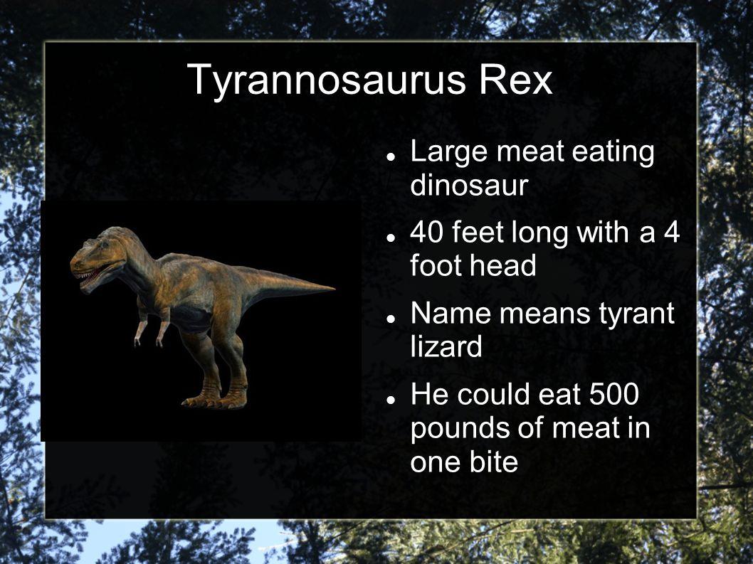 Tyrannosaurus Rex Large meat eating dinosaur