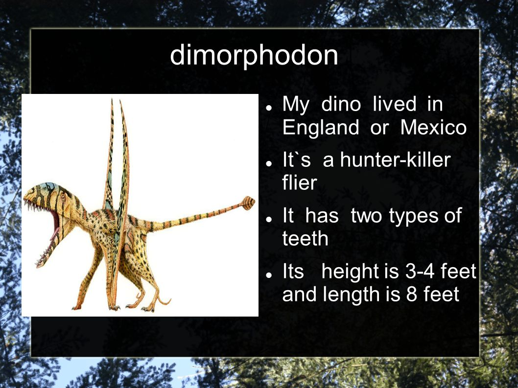 dimorphodon My dino lived in England or Mexico