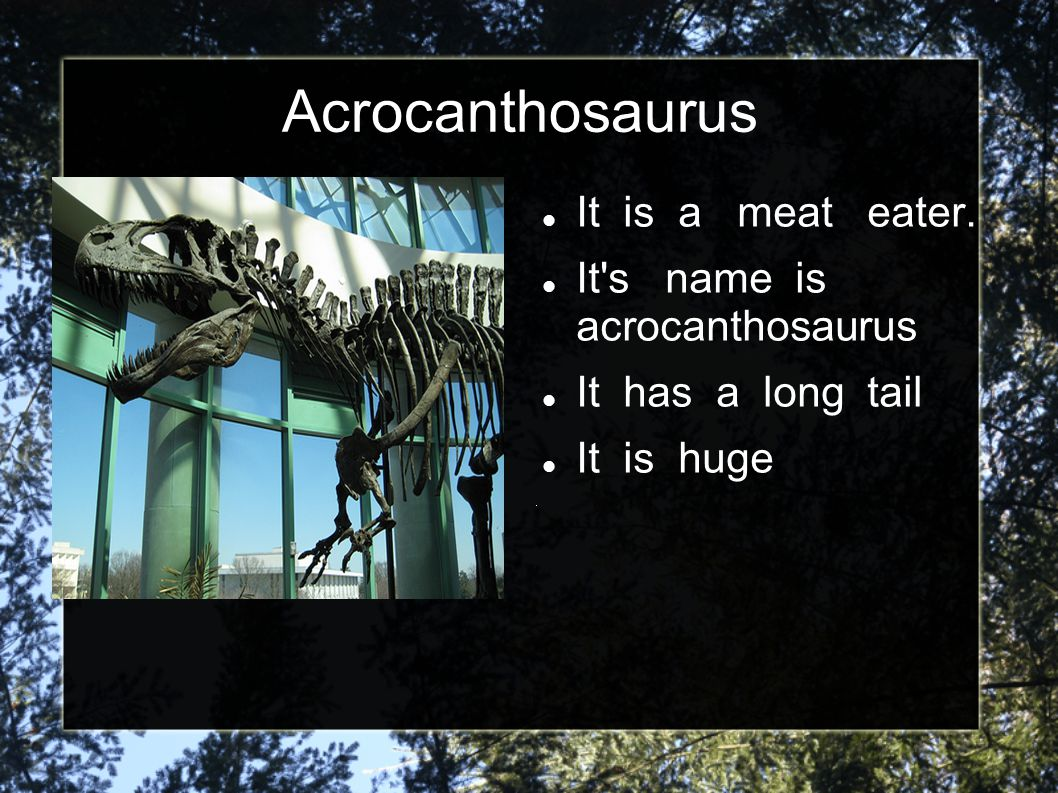 Acrocanthosaurus It is a meat eater. It s name is acrocanthosaurus