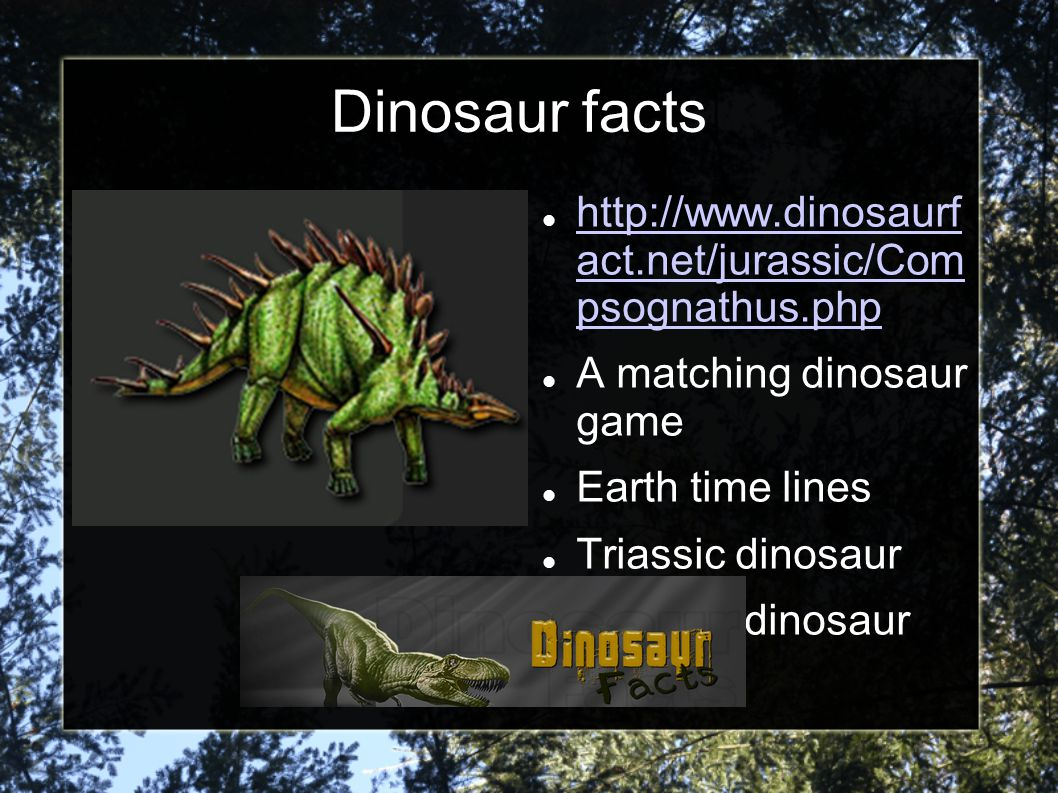 Dinosaur facts http://www.dinosaurf act.net/jurassic/Com psognathus.php. A matching dinosaur game.