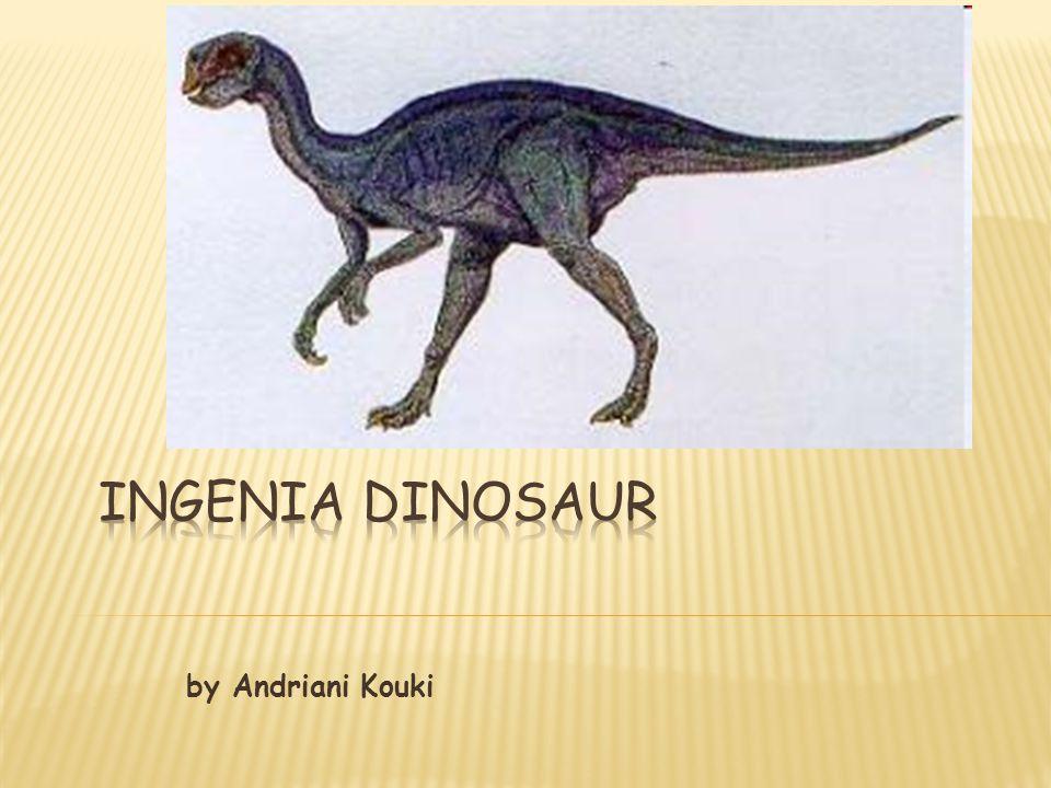 Ingenia Dinosaur by Andriani Kouki