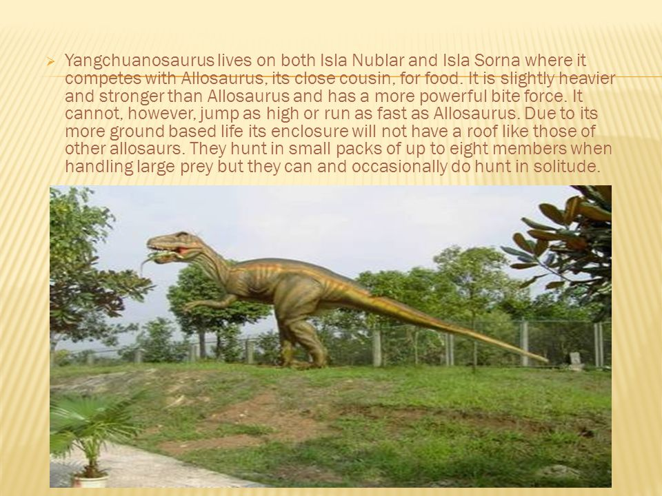 Yangchuanosaurus lives on both Isla Nublar and Isla Sorna where it competes with Allosaurus, its close cousin, for food.