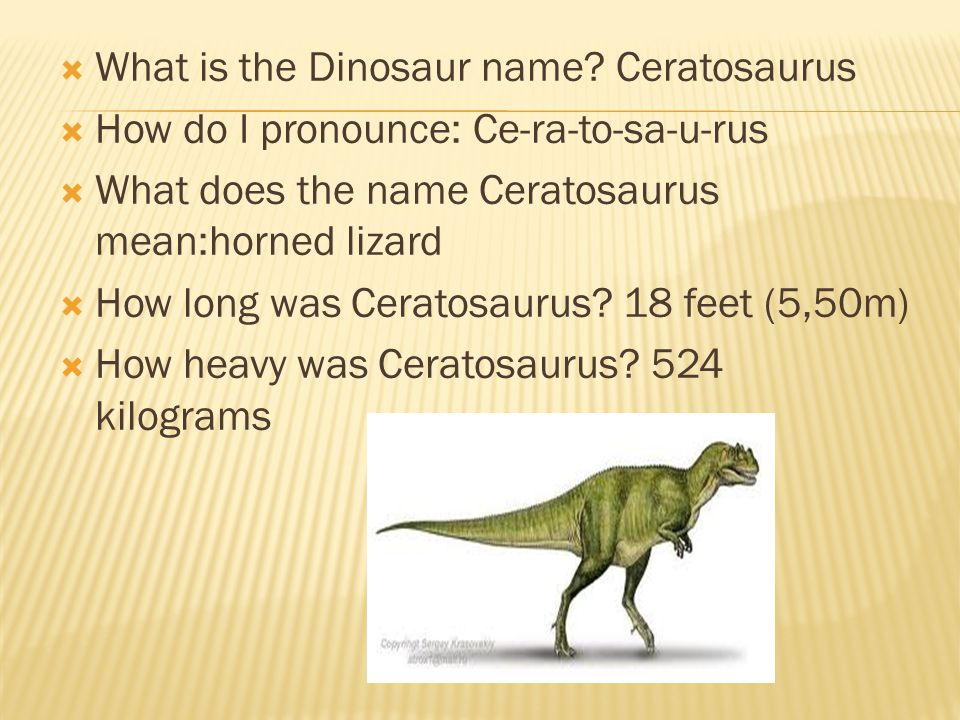 What is the Dinosaur name Ceratosaurus