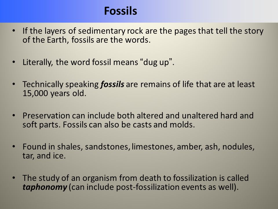 Fossils If the layers of sedimentary rock are the pages that tell the story of the Earth, fossils are the words.
