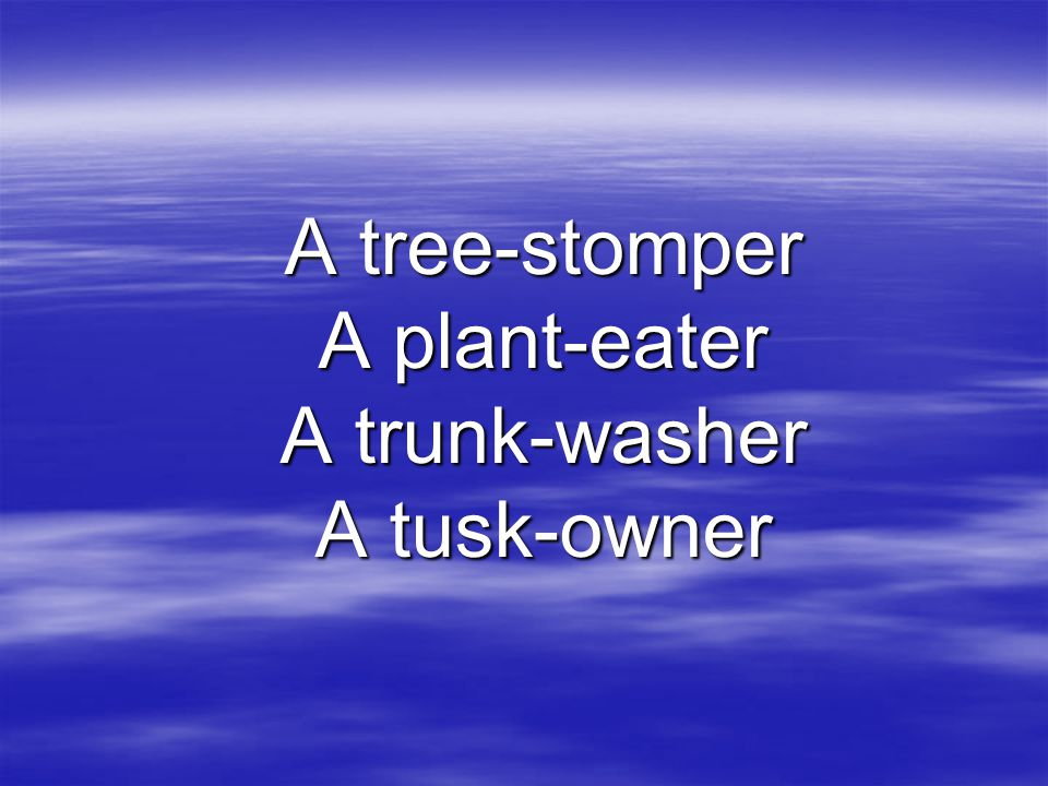 A tree-stomper A plant-eater A trunk-washer A tusk-owner
