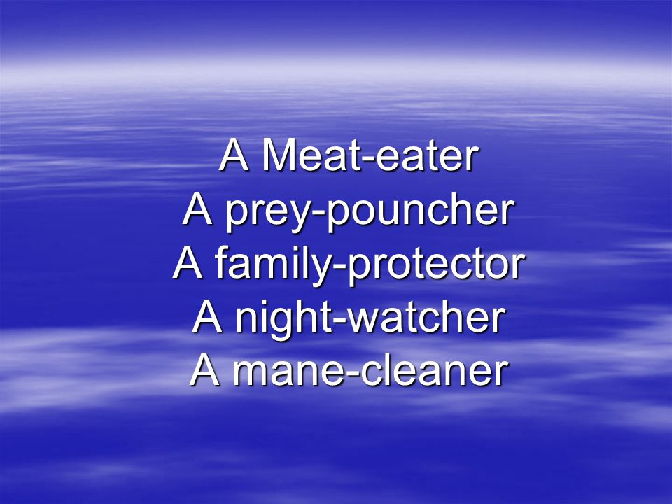 A Meat-eater A prey-pouncher A family-protector A night-watcher A mane-cleaner