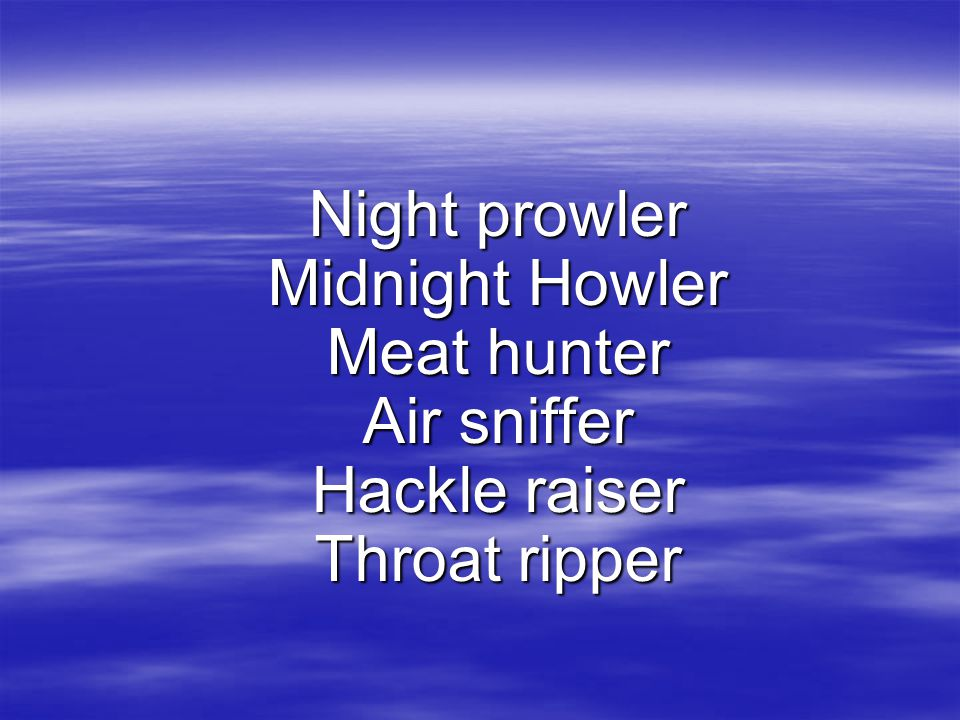 Night prowler Midnight Howler Meat hunter Air sniffer Hackle raiser Throat ripper