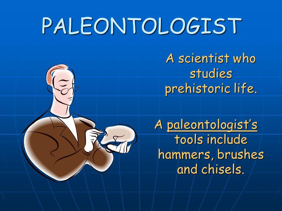 PALEONTOLOGIST A scientist who studies prehistoric life.