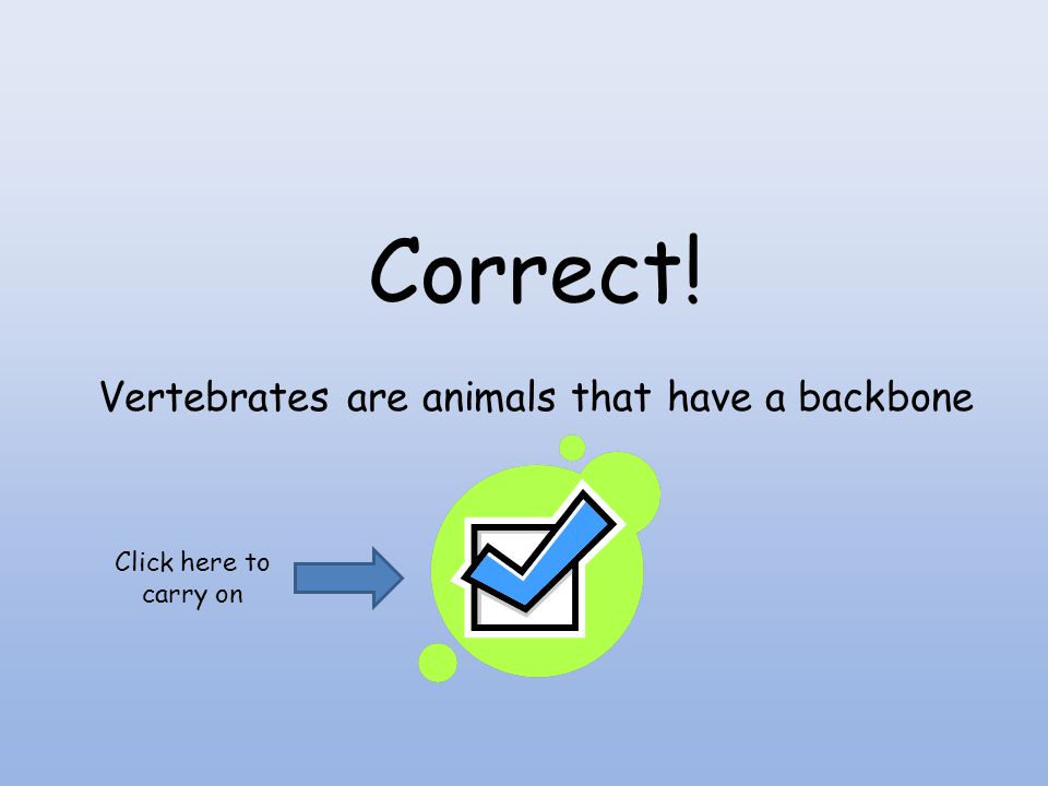 Vertebrates are animals that have a backbone