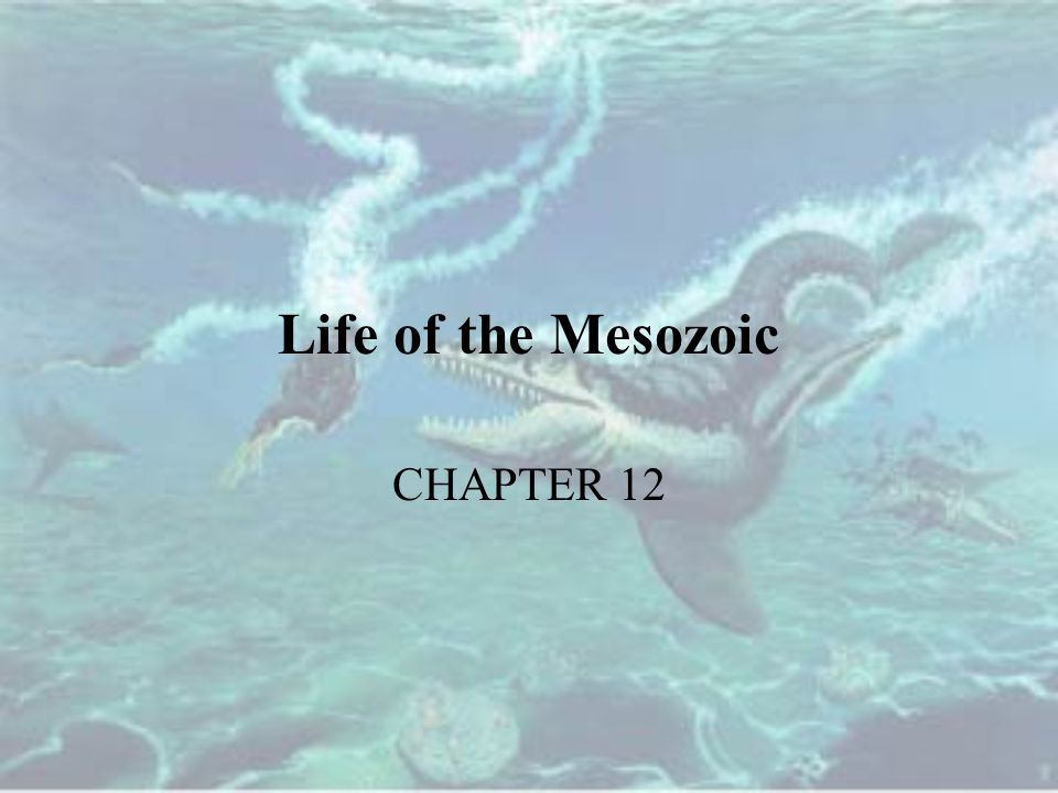 Life of the Mesozoic CHAPTER 12