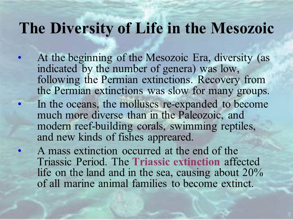 The Diversity of Life in the Mesozoic