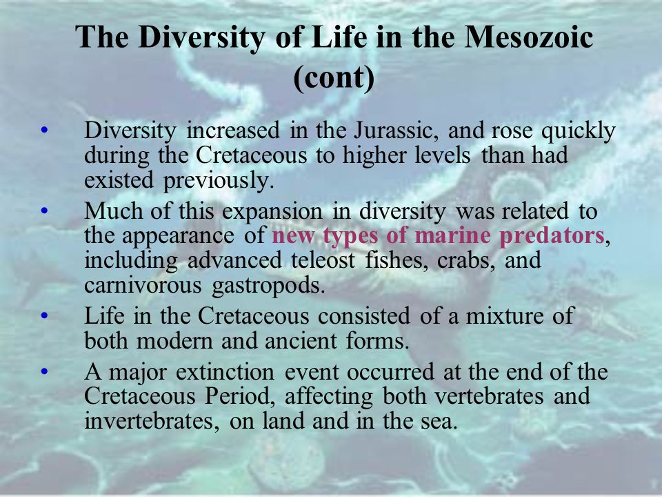 The Diversity of Life in the Mesozoic (cont)