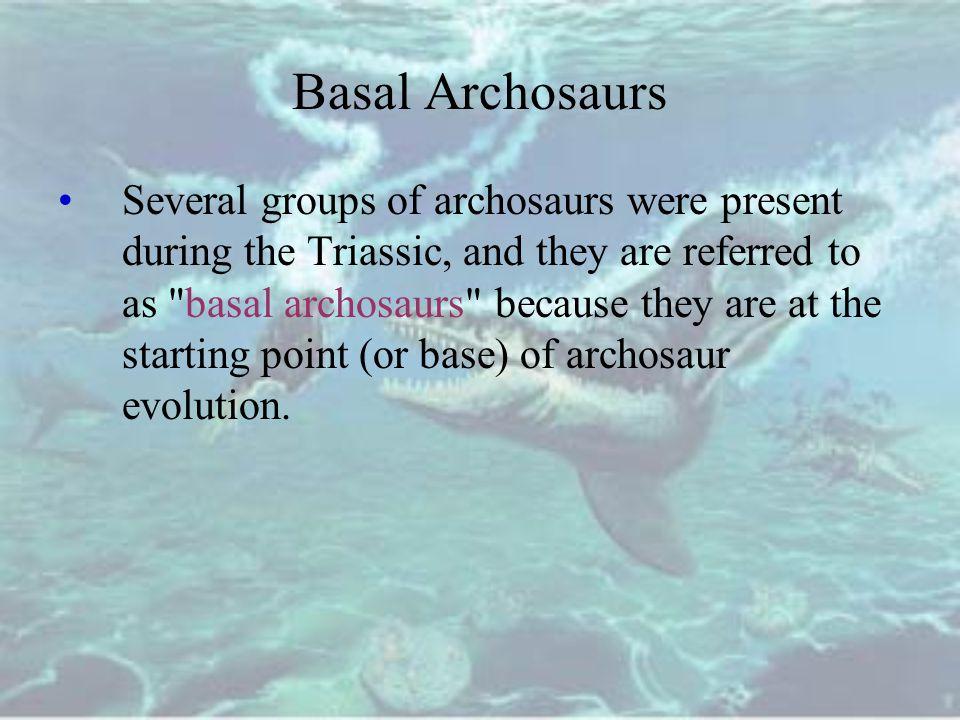 Basal Archosaurs
