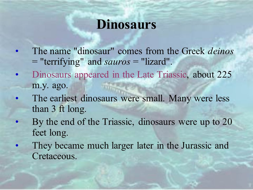 Dinosaurs The name dinosaur comes from the Greek deinos = terrifying and sauros = lizard .