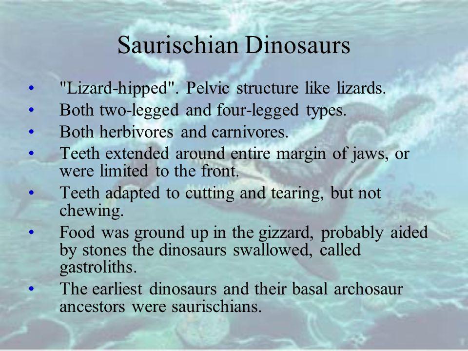 Saurischian Dinosaurs
