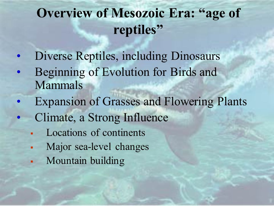 Overview of Mesozoic Era: age of reptiles