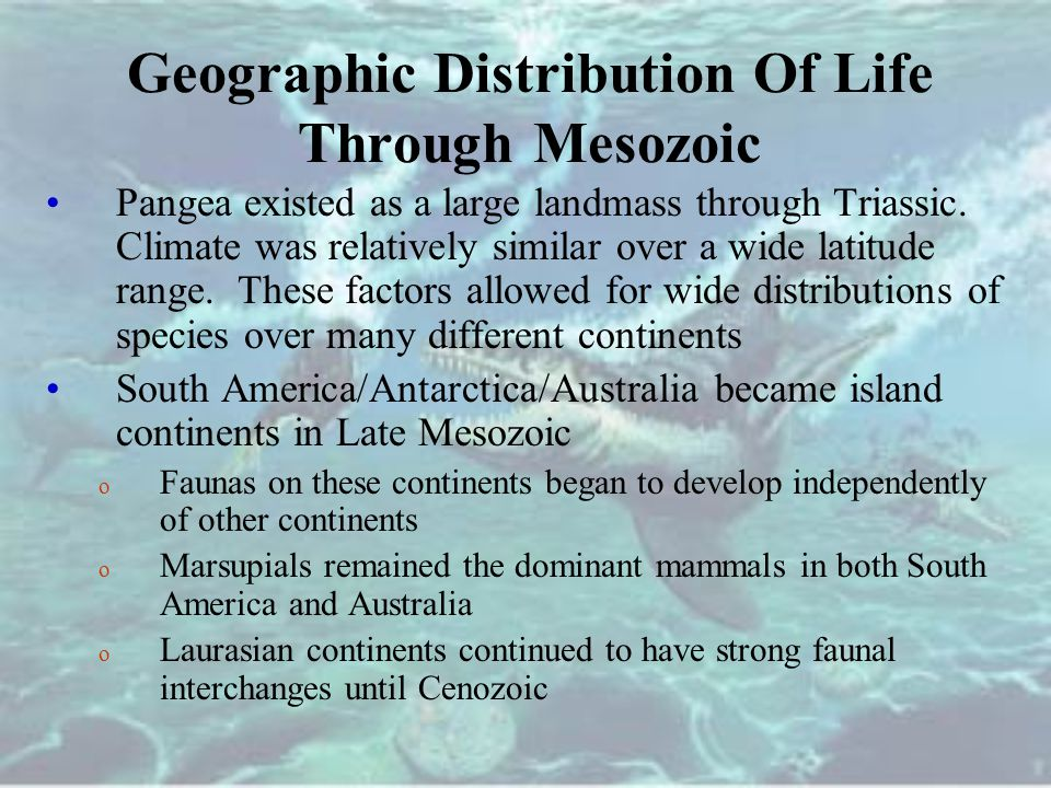 Geographic Distribution Of Life Through Mesozoic