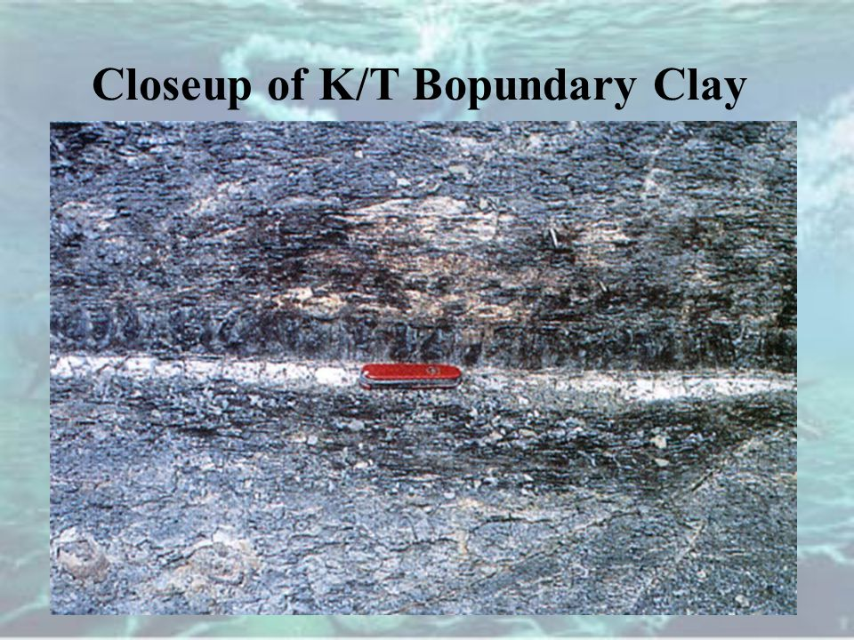 Closeup of K/T Bopundary Clay