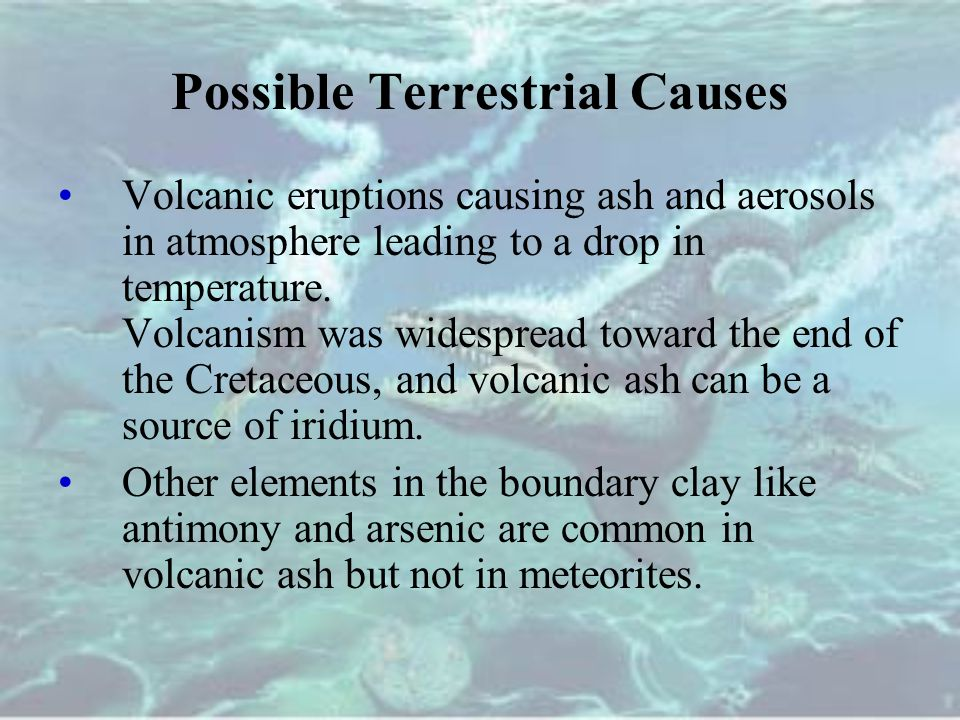 Possible Terrestrial Causes