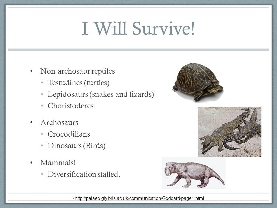 I Will Survive! Non-archosaur reptiles Testudines (turtles)