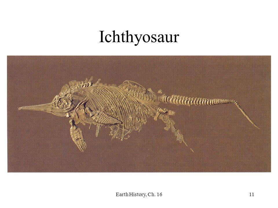 Ichthyosaur Earth History, Ch. 16