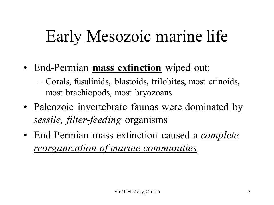 Early Mesozoic marine life