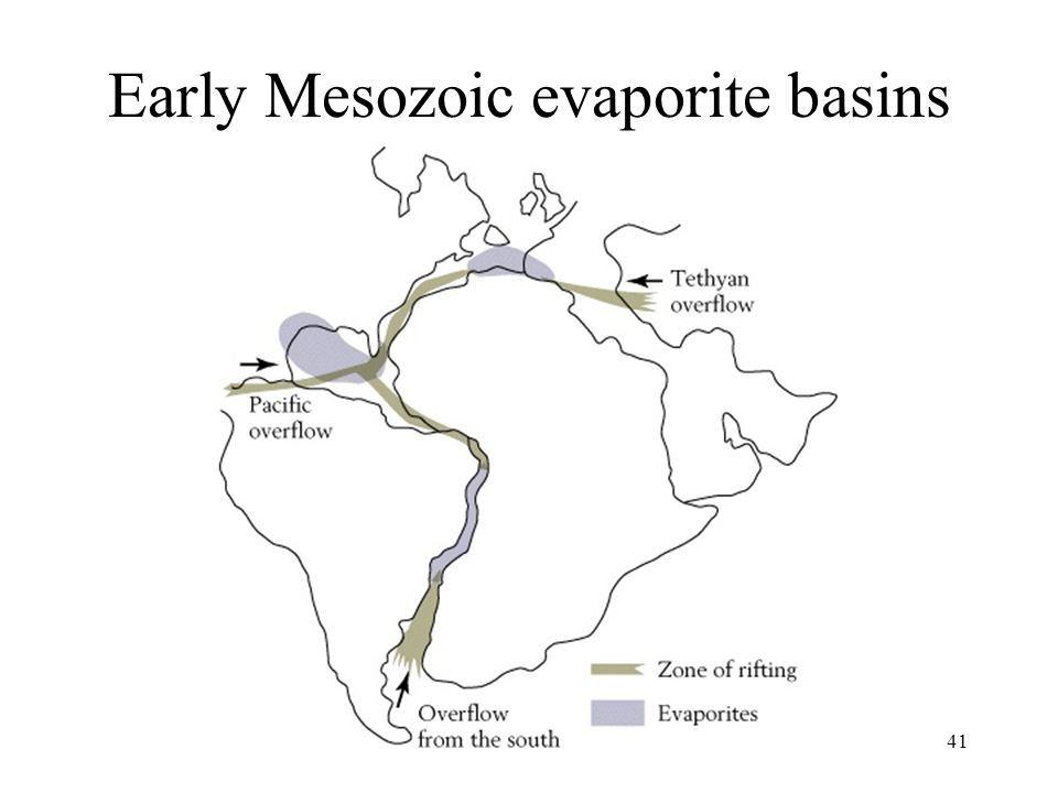 Early Mesozoic evaporite basins