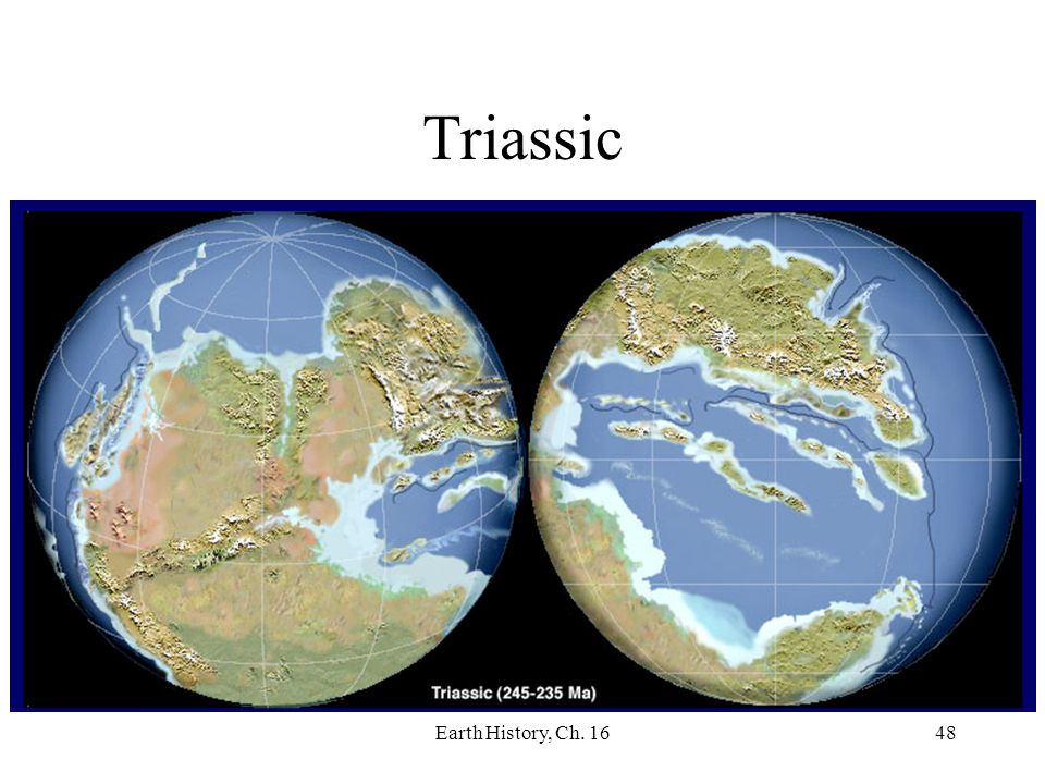 Triassic Earth History, Ch. 16