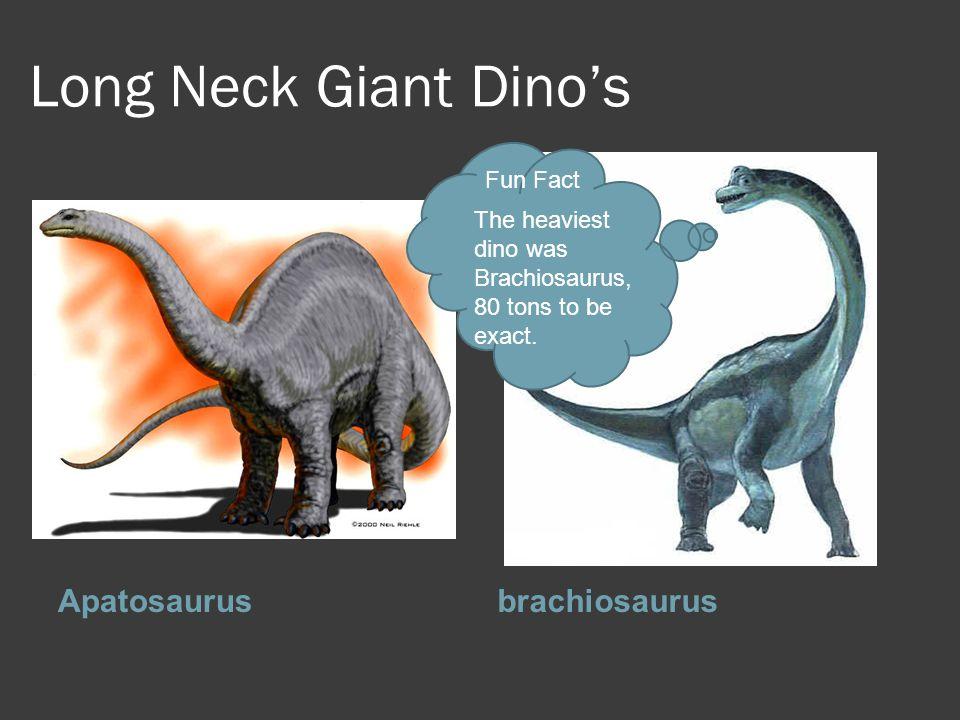 Long Neck Giant Dino's Apatosaurus brachiosaurus Fun Fact