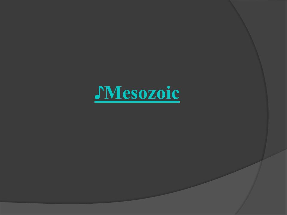 ♪Mesozoic