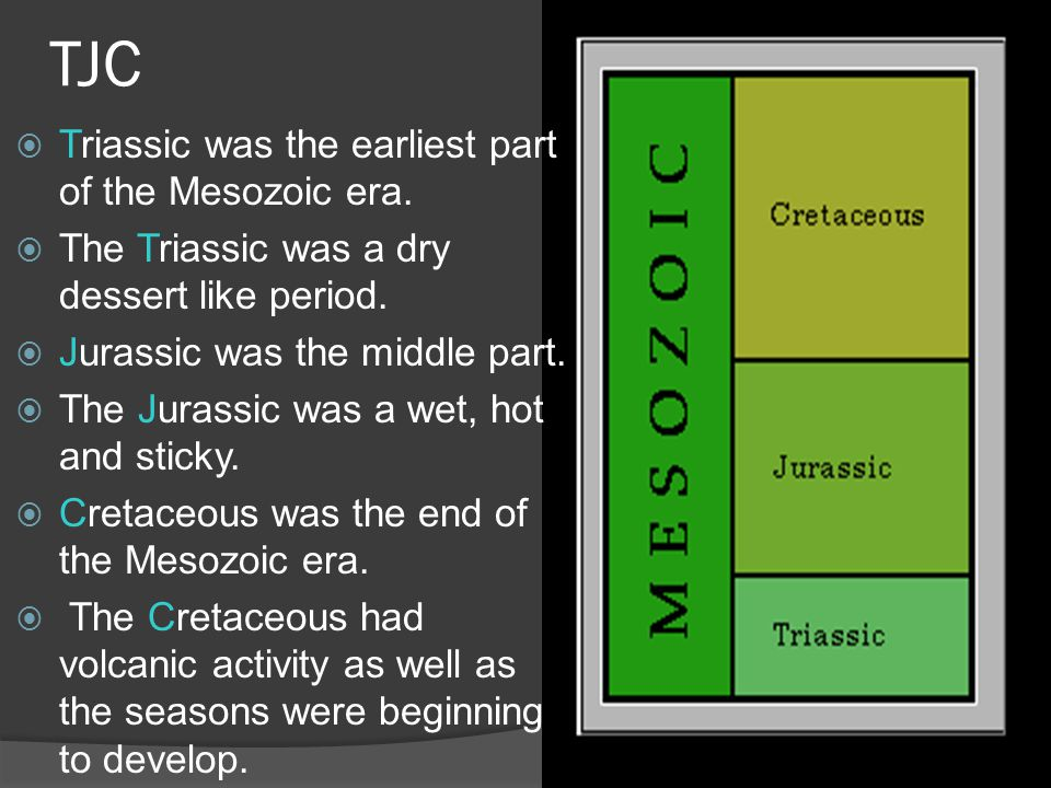 TJC Triassic was the earliest part of the Mesozoic era.