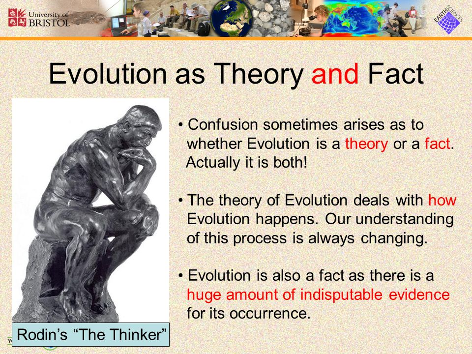 Evolution as Theory and Fact