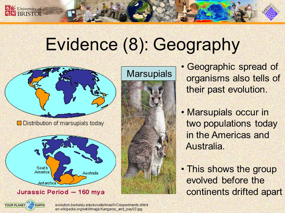 Evidence (8): Geography