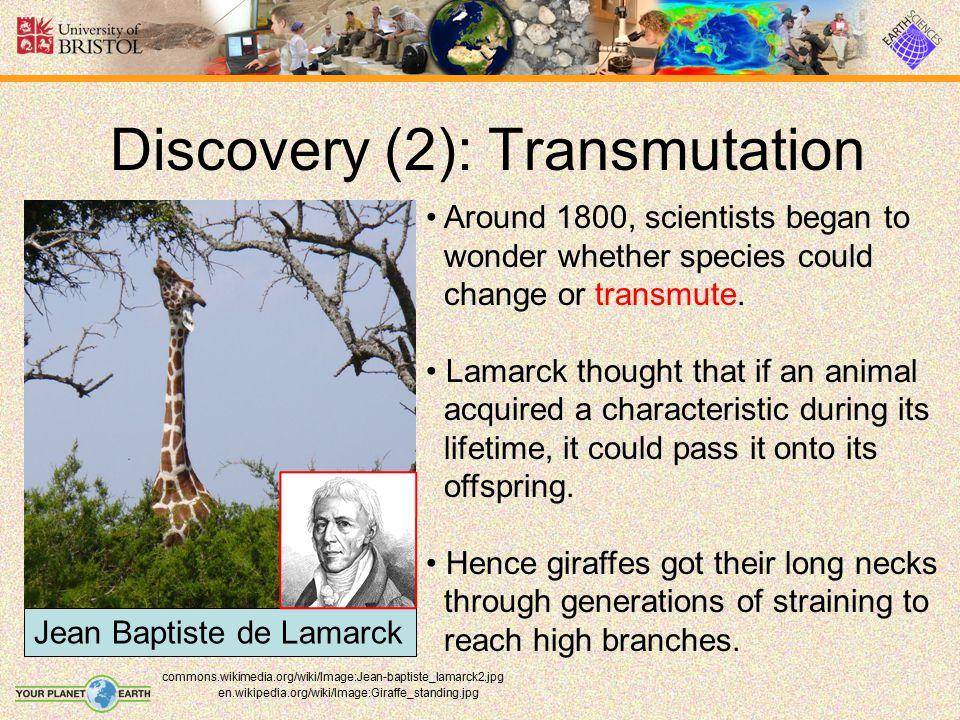 Discovery (2): Transmutation