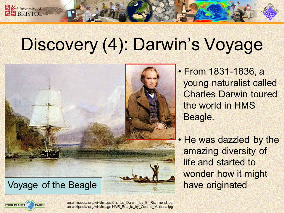 Discovery (4): Darwin's Voyage