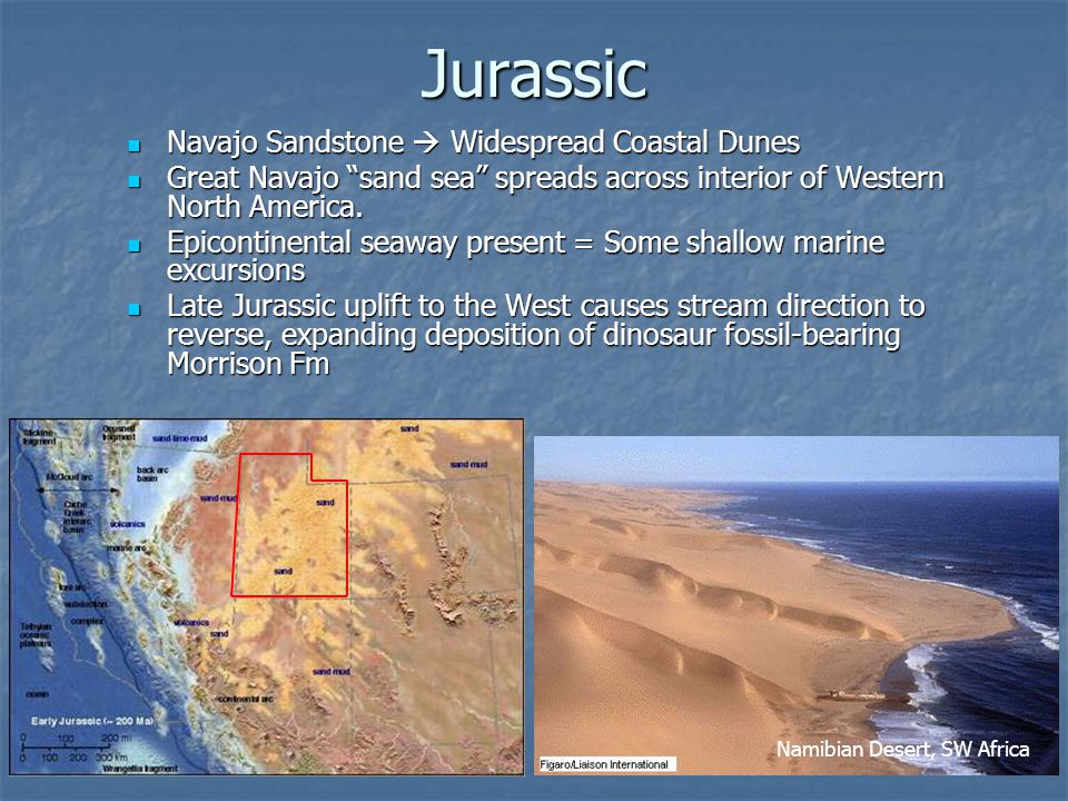 Jurassic Navajo Sandstone  Widespread Coastal Dunes