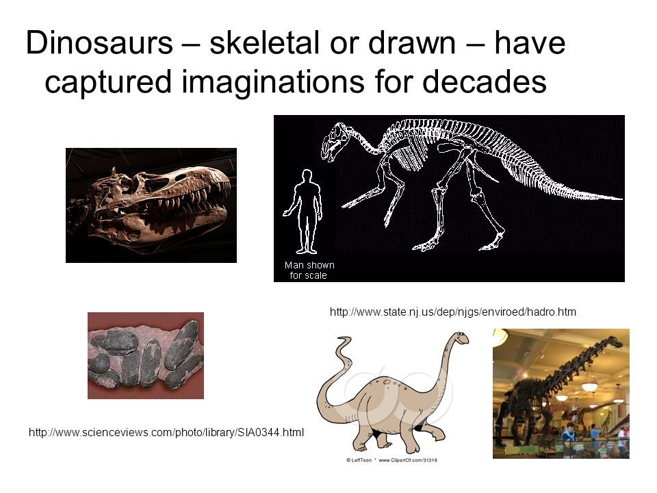 Dinosaurs – skeletal or drawn – have captured imaginations for decades