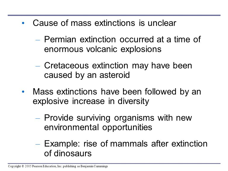 Cause of mass extinctions is unclear