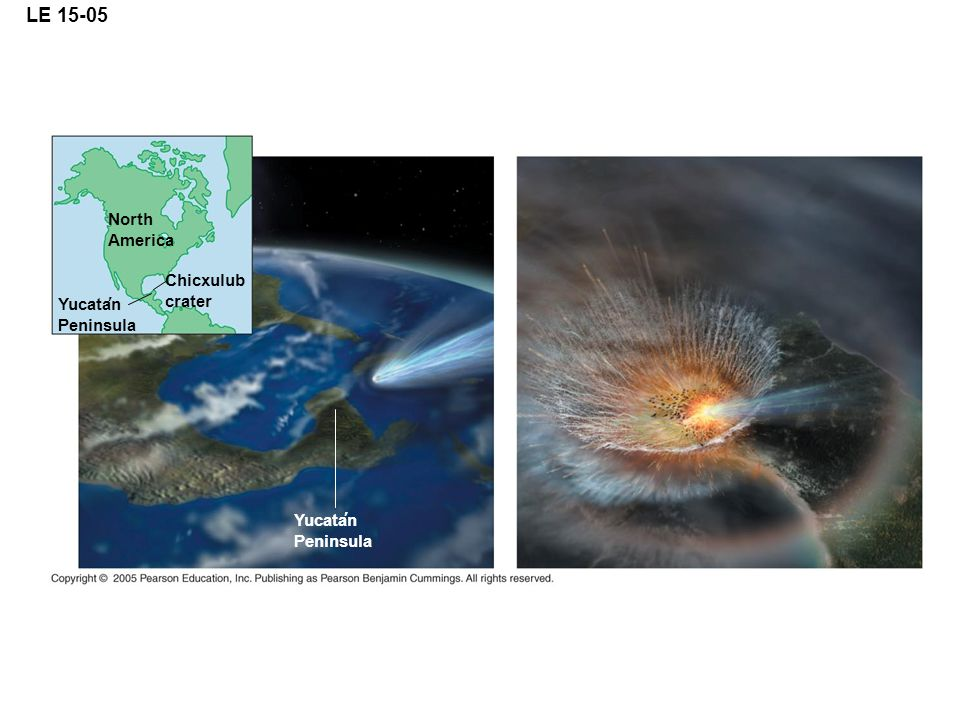 LE 15-05 North America Chicxulub crater Yucatan Peninsula Yucatan