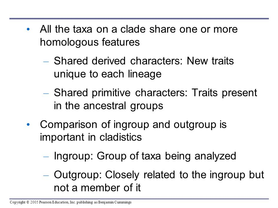 All the taxa on a clade share one or more homologous features