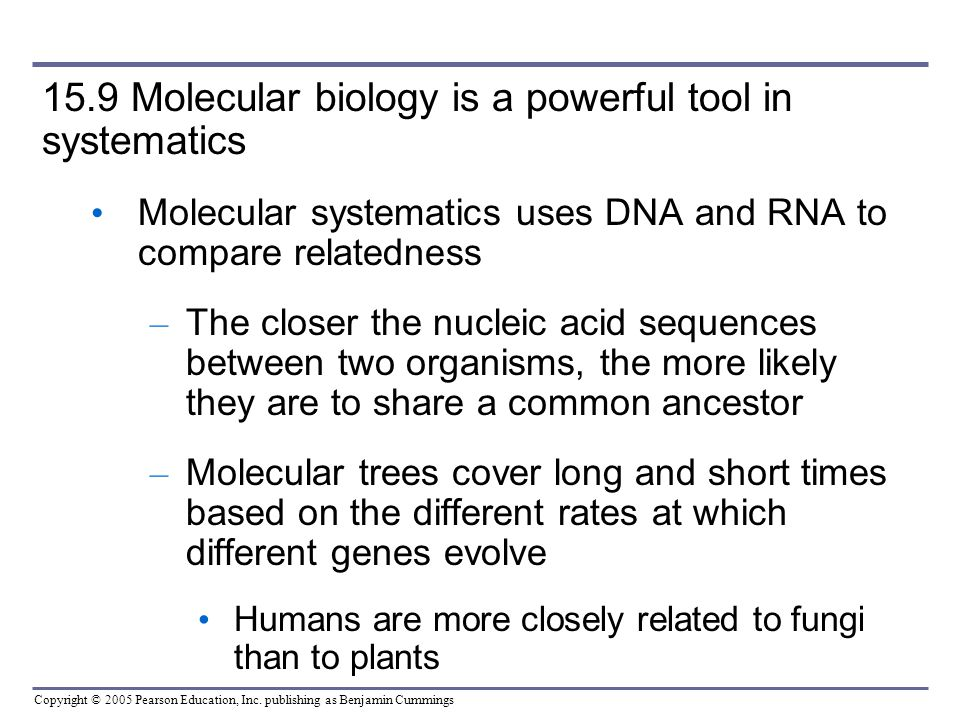 15.9 Molecular biology is a powerful tool in systematics