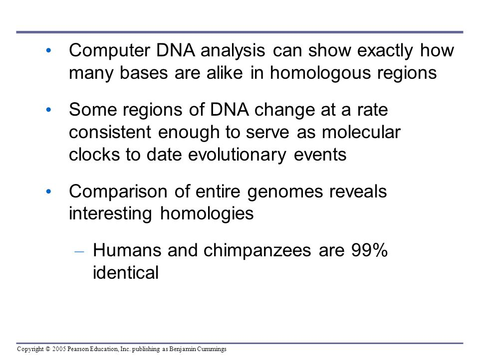 Computer DNA analysis can show exactly how many bases are alike in homologous regions